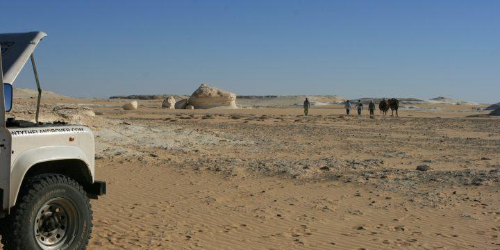 Day 35 – Egypt